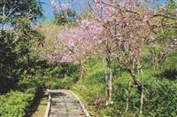 新生特刊-蘭陽校園步道