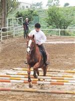 大專盃成績佳 馬術社獲冠 競技啦啦隊第四名