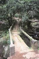 春遊,見識不一樣的淡水--三板橋