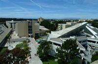 舊金山州立大學。照片來源:http://www.sfsu.edu/