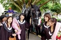 畢業典禮當天,馬術社特地借來一輛馬車,讓畢業生和家長乘坐,沿著書卷廣場做最後的巡禮,也為畢業典禮增添浪漫的氣息。(圖/記者陳振堂)