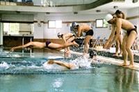 由體育室主辦的水上運動會,聚集了各方游泳好手一較高下。(攝影�邱湘媛)