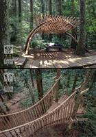 建築系師生森林木十人獲2020臺北設計獎優選