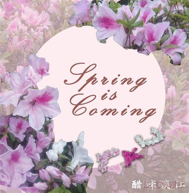 春之饗宴323登場