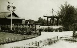 民國40年代,花木初植,覺軒花園附近的宮燈教室尚未建起,圖為自覺軒花園照過去的景色。