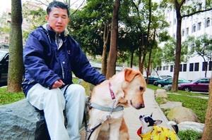 導盲犬Ohara還沒退休時,每天陪伴張國瑞穿梭在校園中。(本報資料照片,攝影�陳振堂)