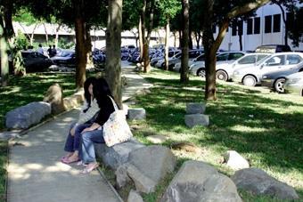 建築系副較授鄭晃二設計的盲人步道,除了方便盲生避開車陣行走外,其他同學也能坐在路邊大石休憩。(記者郭展宏攝影)
